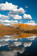 Clouds and a grove of aspen trees with fall foliage are reflected in the water of an alpine lake in Colorado. http://www.gettyimages.com/license/694201267