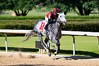 HOT SPRINGS, AR - MAY 02:  Horse #11 Rushie leads down the stretch during the 10th race at Oaklawn Racing Casino Resort on Derby Day during the Covid-19 Pandemic on May 2, 2020 in Hot Springs, Arkansas. (Photo by Wesley Hitt/Getty Images)