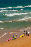 Surfers pulling their boards down the beach, Manly Beach, Sydney, New South Wales, Australia