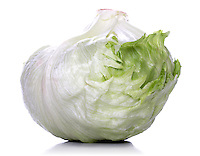 Studio shot of cabbage on white bacground
