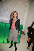 Sabrina Guinness, Burberry celebrates the opening of the Hockney exhibition and their 150th anniversary with a party at the National Portrait Gallery. 11 October 2006. -DO NOT ARCHIVE-© Copyright Photograph by Dafydd Jones 66 Stockwell Park Rd. London SW9 0DA Tel 020 7733 0108 www.dafjones.com