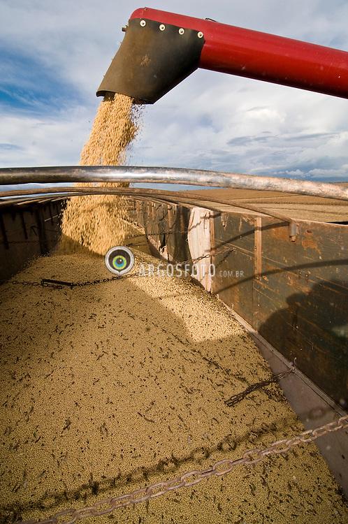 Soy beans are harvested at  Fartura Farm, 200 km from Cuiaba, Mato Grosso, Brazil, 01/03/08. Brazil is the second biggest soy producer worldwide..Colheita da soja, Fazenda Fartura, distante 200km de Cuiaba, MT, 01/03/08. O Brasil e o segundo maior produtor mundial de soja. Erai Maggi Scheffer, dono da Fazenda Fartura, e o maior produtor individual de soja do mundo.