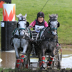 Hopetoun Horse Driving Trials | Hopetoun House | 30 May 2015