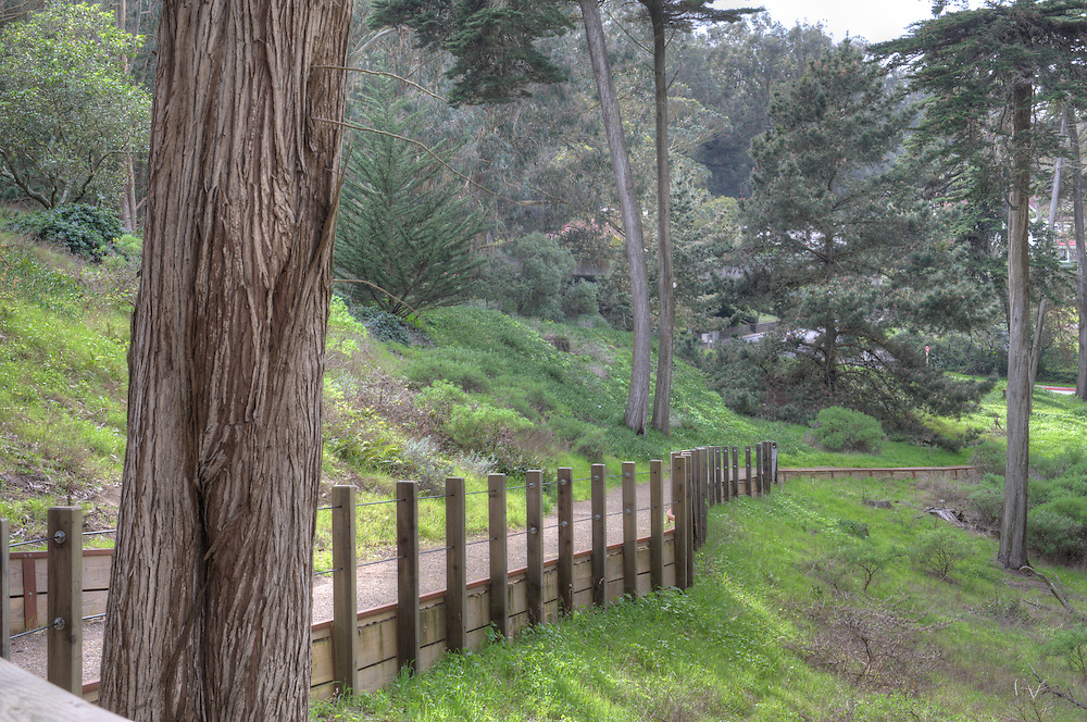 Presidio trails