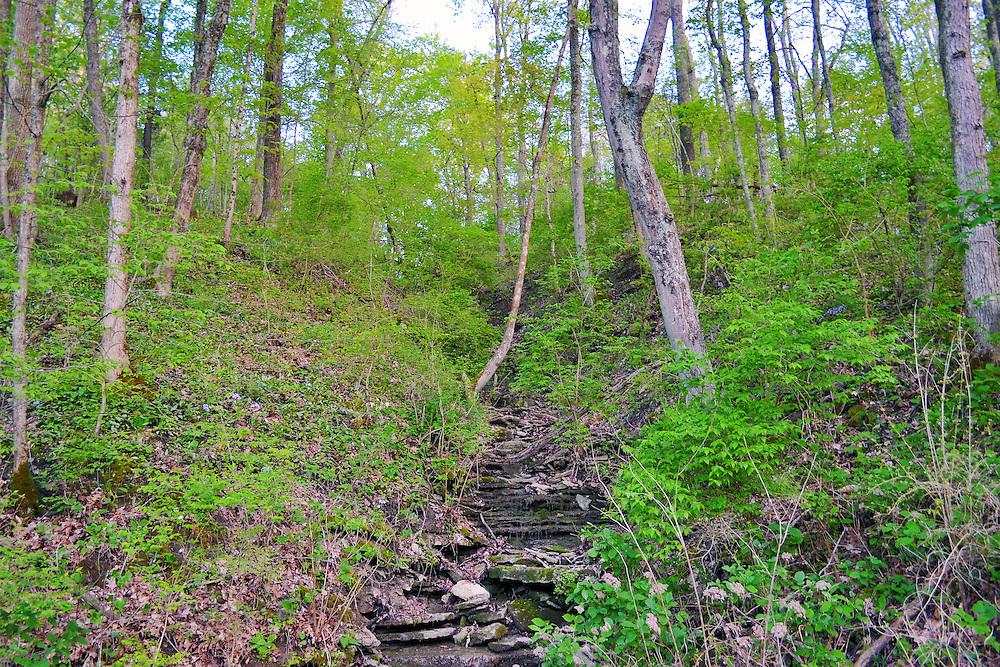 Ohio in Spring