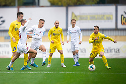 Dejan Lazarevic of Domzale during football match between NK Domzale and NK Triglav in Round #18 of Prva liga Telekom Slovenije 2019/20, on November 23, 2019 in Sports park Domzale, Slovenia. Photo by Sinisa Kanizaj / Sportida