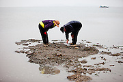"Visitors collecting mussels on the slowly closing ""Mysterious Sea Road"" at Hoedong shore (Jindo island). Jindo is the 3rd biggest island in South Korea located in the South-West end of the country and famous for the ""Mysterious Sea Route"" or ""Moses Miracle"". Every spring thousands flock to the shores of Jindo to walk the mysterious route that stretches roughly three kilometers from Hoedong to the distant island of Modo. Materializing from the rise and fall of the tides, the divide can reach as wide as forty meters."
