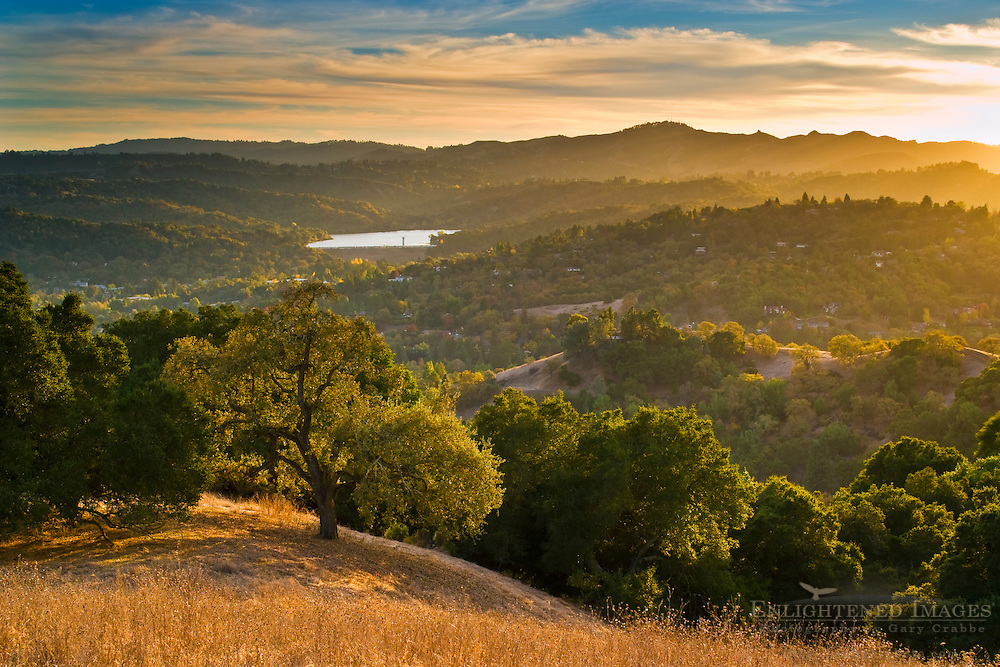 Sunset in the hills above Lafayette, Briones Regional Park, Contra Costa County, California
