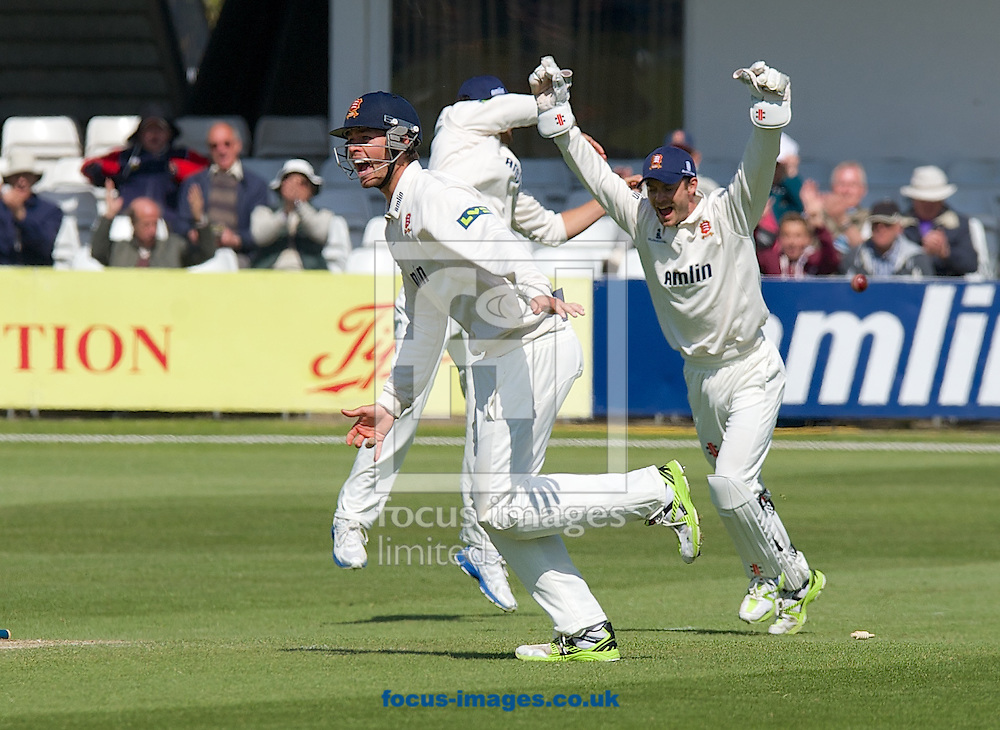 Ben Foakes (L) and Captain and wicketkeeper James Foster Essex County Cricket Club celebrate after David Masters bowls out last man Mark Footitt of Derbyshire County Cricket Club during day 4 of the LV County Championship Div Two match at the County Ground, Chelmsford, Chelmsford<br /> Picture by Alan Stanford/Focus Images Ltd +44 7915 056117<br /> 16/04/2014