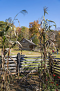 Humpback Rocks Mountain Farm is a restored 1890s farmstead open to the public at Milepost 5.8 on the Blue Ridge Parkway, in Virginia, in the Blue Ridge Mountains (a subset of the Appalachian Mountains), USA. In summer, costumed interpreters demonstrate 1890s southern Appalachian mountain life. European settlers of the Appalachian Mountains forged a living from abundant native materials: hickory, chestnut, and oak trees provided nuts for food, logs for building, and tannin for curing hides; and the rocks were used as foundations, chimneys and stone fences. This farm was originally a Land Grant tract dispensed by the Commonwealth of Virginia to induce pioneers to settle; and later it became known as the William J. Carter Farm. The scenic 469-mile Blue Ridge Parkway was built 1935-1987 to aesthetically connect Shenandoah National Park (in Virginia) with Great Smoky Mountains National Park in North Carolina, following crestlines and the Appalachian Trail.