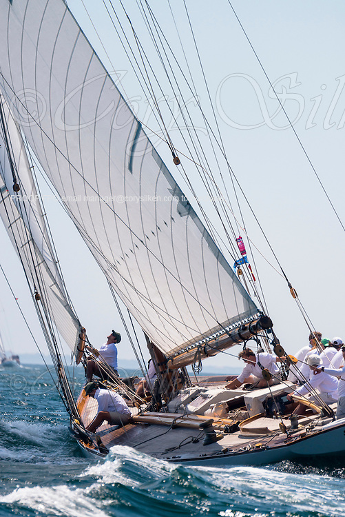 Spartan sailing in the Opera House Cup Regatta.