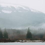 Mid-winter in Skagit Valley, Washington
