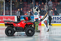 KELOWNA, CANADA - MARCH 13:  Rocky Raccoon, the mascot of the Kelowna Rockets stands at attention during the national anthem against the Spokane Chiefs on March 13, 2019 at Prospera Place in Kelowna, British Columbia, Canada.  (Photo by Marissa Baecker/Shoot the Breeze)
