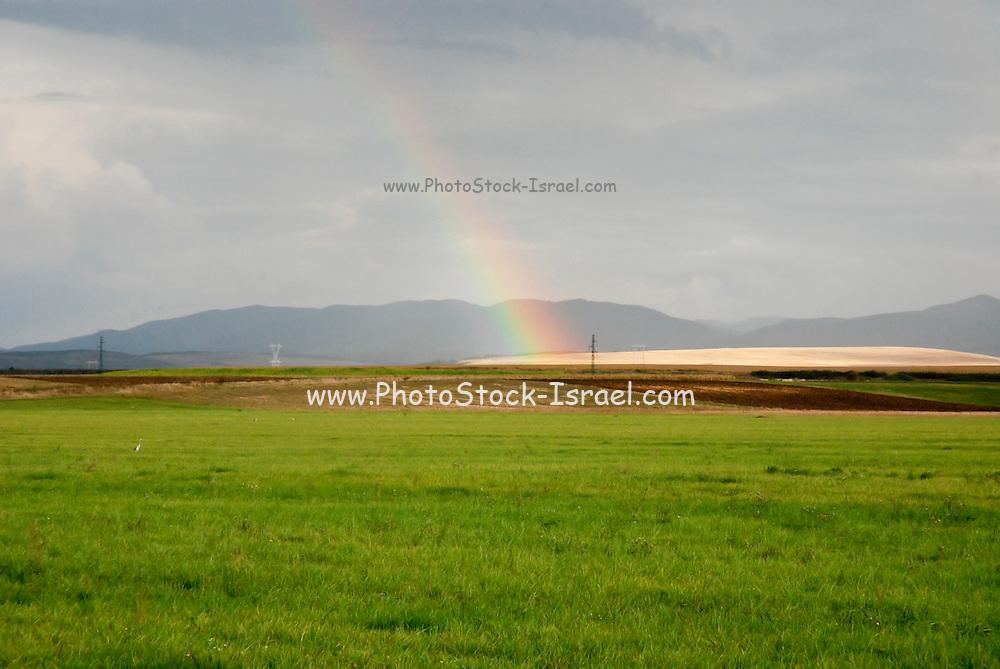 Romania Rainbow
