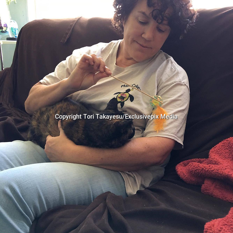 Lost Cat Reunites With Her Owner After 15 Years Apart <br /> <br /> Three weeks ago, Tori Takayesu got a call from the Maui Humane Society shelter about her lost cat, but she had no idea what they were talking about.<br /> <br /> &quot;I was like, 'What cat?'&quot; said owner ToriTakayesu . &quot;And they said, 'Oh, we have your tortoiseshell tabby, and she's fine, and we're waiting for you to come by.' But I hadn't had a cat in 15 years.&quot;<br /> Takayesu figured the shelter had made a mistake, and that someone &mdash; the cat's real owner &mdash; would eventually claim her. But no one did, and the shelter kept calling Takayesu. Over the weekend, an animal control officer even visited Takayesu's house to remind her about the cat waiting at the shelter.<br /> <br /> &quot;They said it was a senior cat,&quot; Takayesu said. &quot;I was concerned that nobody would adopt her, and she'd be euthanized or something. I didn't want that on my conscience, so I decided to pull her out, whomever she belonged to.&quot;<br /> <br /> Four days after the initial call from the shelter, Takayesu went to collect the mystery cat. The staff delivered the cat to Takayesu in a carrier. When Takayesu opened it, she got the biggest surprise.<br /> <br /> &quot;I opened it up, and I was like, 'Oh my god! That's my cat,'&quot; Takayesu said. &quot;It was crazy.&quot; The cat turned out to be James, a female cat Takayesu and her family had owned 15 years ago. She was named after a character in her son's favorite show, Thomas the Tank Engine &amp; Friends. James the cat had first lived with the family in Kula, on the Hawaiian island of Maui, then moved with them 10 miles away to another part of Maui, Makawao.<br /> <br /> &quot;She was fine for a month [in Makawao] &mdash; she had the same routine,&quot; Takayesu said. &quot;She'd come in at night, and during the day, she'd wander in and out. Then we noticed she didn't come in at night. We went looking for her and couldn't find her.&quot;<br /> <br /> The family searched for a month, driving around each evening to look for her. They even went back to Kula, to see if she'd gotten disoriented and wandered back home. But she