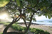 Shipwreck beach, Kauai, Hawaii<br />