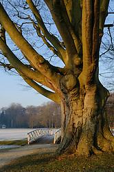Elswout, Overveen, Bloemendaal, Noord Holland, Netherlands