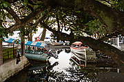 Water taxis called Pangas tied up along the shore of Lake Catemaco in Catemaco, Veracruz, Mexico. The tropical freshwater lake at the center of the Sierra de Los Tuxtlas, is a popular tourist destination and known for free ranging monkeys, the rainforest backdrop and Mexican witches known as Brujos.