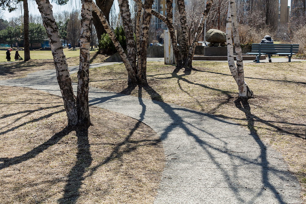 http://Duncan.co/pathway-and-shadows-of-trees