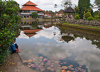 Man looking into a pond at Pura Aman Ayun in Mengwi, Bali, Indonesia