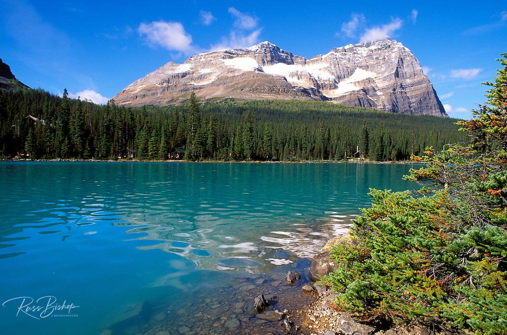 Morning light on Mount Odaray from the shore of Lake O'Hara, Yoho National Park, British Columbia, Canada.