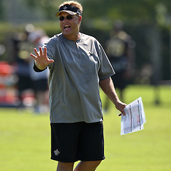 July 31, 2011; Metairie, LA, USA; New Orleans Saints defensive coordinator Gregg Williams during training camp practice at the New Orleans Saints practice facility. Mandatory Credit: Derick E. Hingle