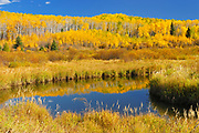 Autumn around the Spruce River<br /> Prince Albert National Park<br />Saskatchewan<br />Canada