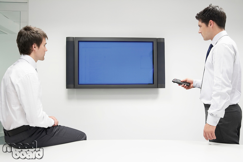 Two Businessmen Using Flat Panel Monitor
