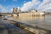 Cathédrale Notre Dame depuis les quais de Seine// Notre Dame cathedral from Seine riverside