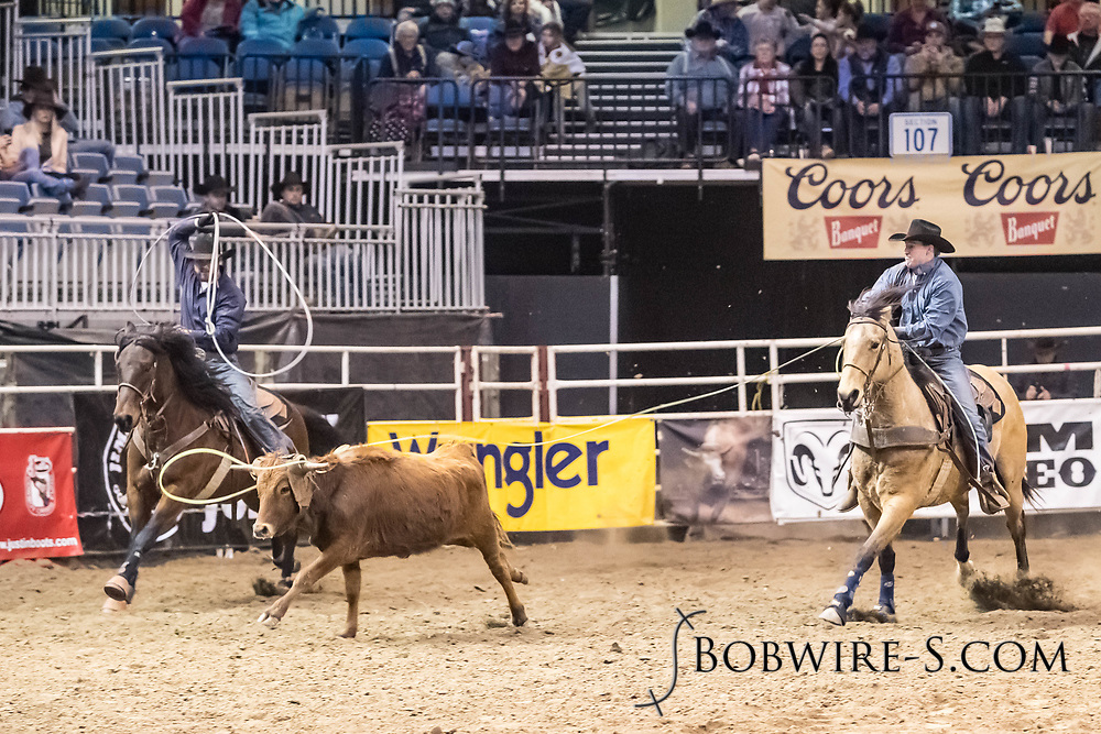 Tye and Tee Hale compete in team roping at the Bismarck Rodeo on Friday, Feb. 2, 2018. They had a no time on the run.