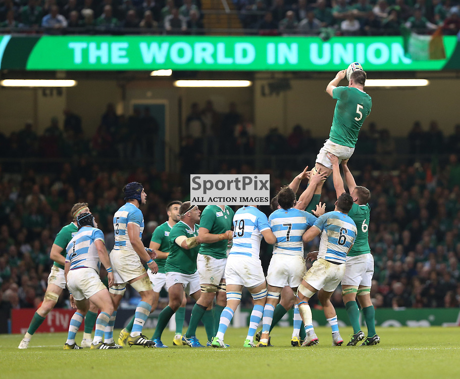 Devin Toner takes the lineout ball during the Rugby World Cup Quarter Final, Ireland v Argentina, Sunday 18 October 2015, Millenium Stadium, Cardiff (Photo by Mike Poole - Photopoole)