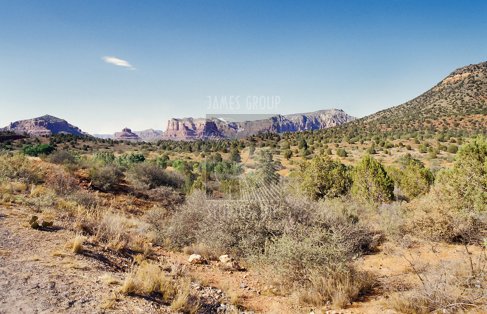 Arizona desert near Sedona on a sunny summer day with blue sky