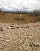 Spent ammunition shells remain in the desert in an area known for target shooting near Santa Rita Road, Sonoran Desert, Sahuarita, Arizona, USA.