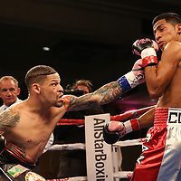 "Orlando ""El Fenomeno""  Cruz (L) punches Gabino ""Flash"" Cota during their Boxeo Telemundo WBO/NABO Super Featherweight bout on Friday, October 9, 2015 at the Kissimmee Civic Center in Kissimmee, Florida. Cruz, who is from Puerto Rico, is the first ever openly gay boxer  in the history of the sport and won the bout by unanimous decision.  (Alex Menendez via AP)"