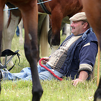 It got hot in the afternoon at the Spancilhill Horse Fair on Friday.<br />