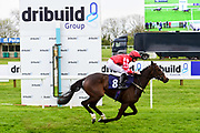 "Storm Wings ridden by Charlie Bennett and trained by Jo Hughes in the Let's Play ""Four From The Top"" / British Ebf Novice Median Auction Stakes race.  - Mandatory by-line: Ryan Hiscott/JMP - 01/05/2019 - HORSE RACING - Bath Racecourse - Bath, England - Wednesday 1 May 2019 Race Meeting"