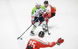 Klemen Pretnar of Slovenia vs Pozsgai Tamas of Hungary during friendly Ice Hockey match between National Teams of Slovenia and Hungary, on April 11, 2017 in Celje, Slovenia. Photo by Vid Ponikvar / Sportida