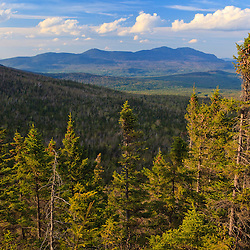 View of spruce trees and the distant Bigelow Range from the Appalachian Trail on Crocker Mountain in Stratton, Maine.