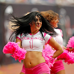 October 10, 2010; Houston, TX USA; Houston Texans cheerleaders perform during the first half of a game between the Houston Texans and the New York Giants at Reliant Stadium. Mandatory Credit: Derick E. Hingle