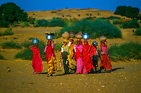 Women carrying water from well to a village in the Thar desert between Jaisalmer and Sam, Rajasthan, India