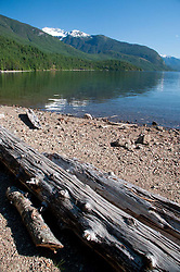 Driftwood at Lightening Creek Beach with Ross Lake and Jack Mountain in the Distance, Ross Lake National Recreation Area, North Cascades National Park, Washington, US