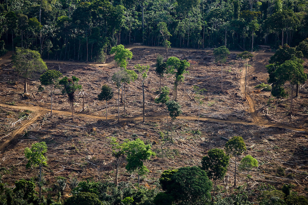 Amazon rainforest land is cleared for a bauxite mine owned by Alcoa in the Juruti Municipality, Para State, Brazil, August 13, 2008..Daniel Beltra/Greenpeace