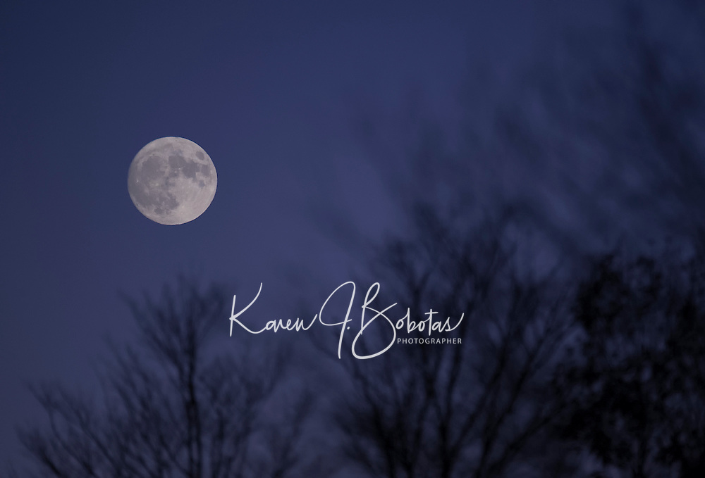 Full moon in Gilford, New Hampshire.  ©2016 Karen Bobotas Photographer
