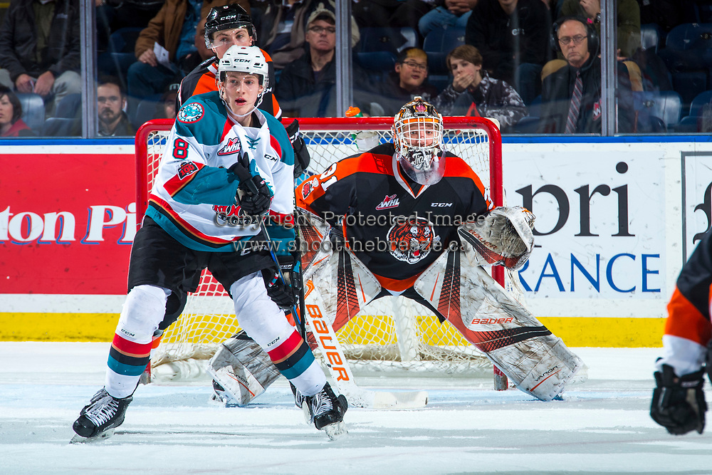KELOWNA, CANADA - JANUARY 30: Jack Cowell #8 of the Kelowna Rockets looks for the pass ahead of Jordan Hollett #31 of the Medicine Hat Tigers on January 30, 2017 at Prospera Place in Kelowna, British Columbia, Canada.  (Photo by Marissa Baecker/Shoot the Breeze)  *** Local Caption ***