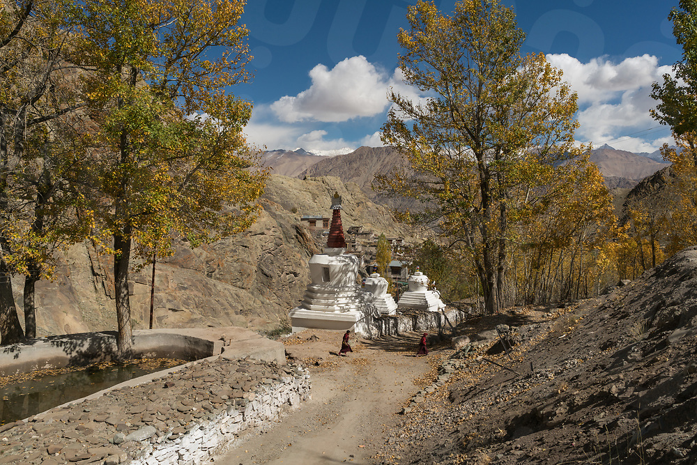 October 11 - 2016 - Leh, Ladakh (India). Monks walk outside Hemis monastery. © Thomas Cristofoletti / Ruom