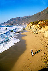 California: Monterey Region.  Garrapata Beach in Big Sur.  Photo #: camon4103..Photo copyright Lee Foster, 510/549-2202, lee@fostertravel.com, www.fostertravel.com