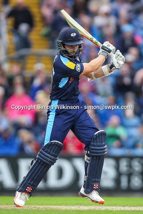 Picture by Alex Whitehead/SWpix.com - 19/06/2016 - Cricket - NatWest T20 Blast - Yorkshire Vikings v Derbyshire Falcons - Headingley Cricket Ground, Leeds, England - Yorkshire's Kane Williamson bats.