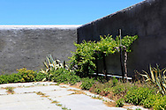A corner of the detention area on Robben Island which Nelson Mandella used as his orchard.  Robben Island is the island where Nelson Mandella was held prisoner near Cape Town, South Africa.  Photo by Dennis Brack...