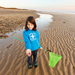 A young girl hunt for crabs on Bound Brook Island, Cape Cod National Seashore, Wellfleet, Massachusetts.