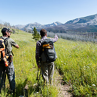 two hikers on whiterock trail, through old burn, burned trees and meadows, to badger cabin, badger two medicine usfs rocky mountain front lewis and clark national forest montana